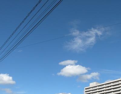 DSCN1396.jpg