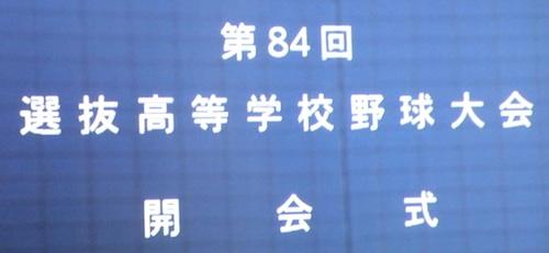 DSCN5330.jpg
