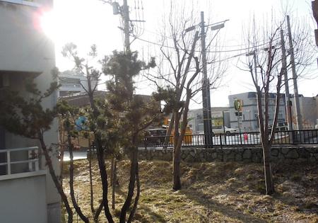 DSCN7460.jpg